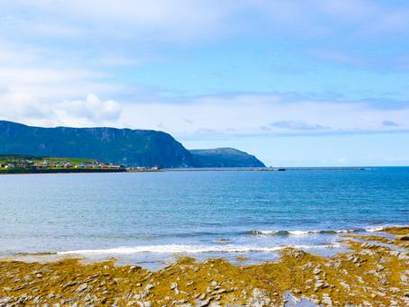 Conheça a província de Newfoundland & Labrador. Vale a pena?!