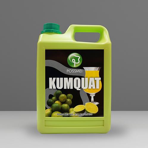 Kumquat Syrup (case)