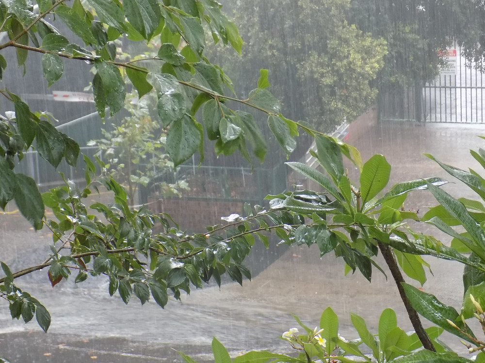 Street Flood.JPG