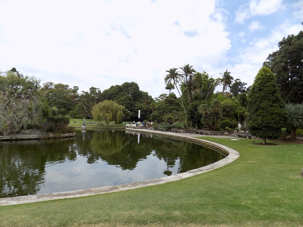 Sydney Botanical Gardens 3.JPG