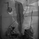 """Chopin Moment"" photogragh of handmade installation with mixed media, sheet music, broken glass and light. 2016 ©David Allen Reed"