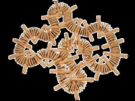 Cordão eucalipto branco com bastões