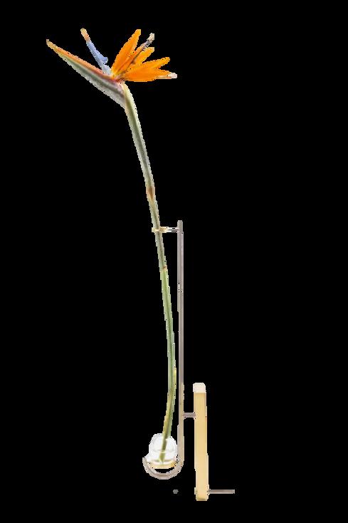 Vaso V2 Latão