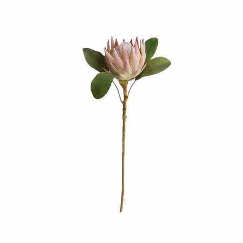 Haste De Protea Pink