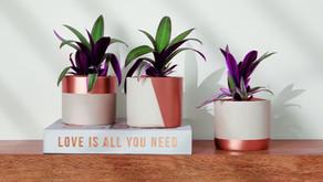 Como decorar um ambiente gastando pouco