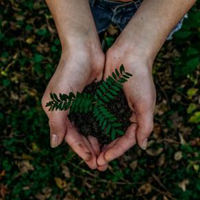 COMMENT RESPECTER LA NATURE EN VACANCES ? - HOE DE NATUUR TE RESPECTEER OP VAKANTIE ?