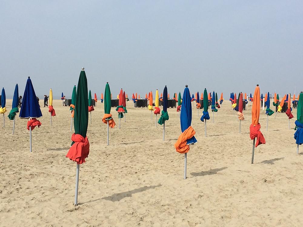 plage avec parasols