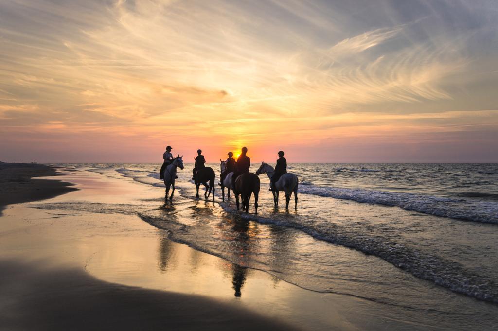 Activités de plage à la Côte d'Opale - Strandactiviteiten Côte d'Opale