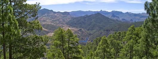 Réserve de la biosphère à Gran Canaria - Gran Canaria Biosfeerreservaat