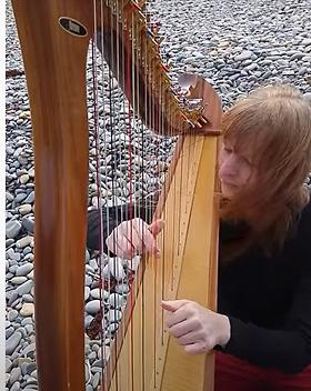 WEBSITE harp on shore.PNG