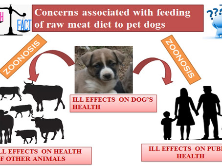 Feeding of Raw Meat Diets to Pet Dogs: Myth and Fact