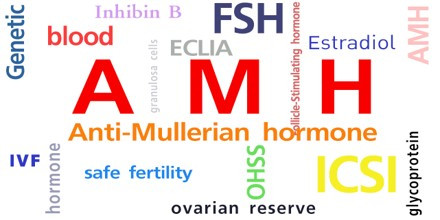 Anti-Mullerian Hormone: An Endocrine Marker to Predict Fertility in Farm Animals