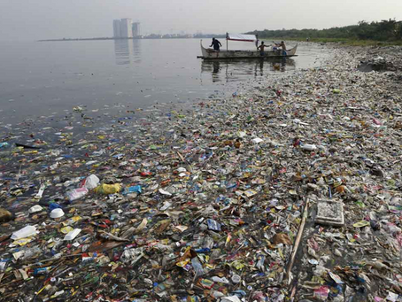 Impact of Plastic Pollution on Marine Biodiversity: Current Situation and Way Forward