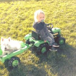 Farmer Jonah and his sidekick Rasher living it large in the Irish sun