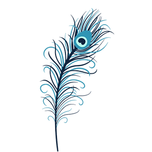 transparent-feathers-turquoise-6.png