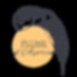 logo-officiel-ayorin-non-vectorielle-mai