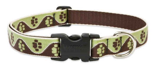 Lupine Mud Puppy Adjustable Collar 1""
