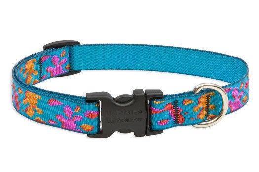 Lupine Wet Paint Adjustable Collar