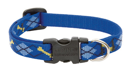 "Lupine Dapper Dog Adjustable Collar 1/2"""