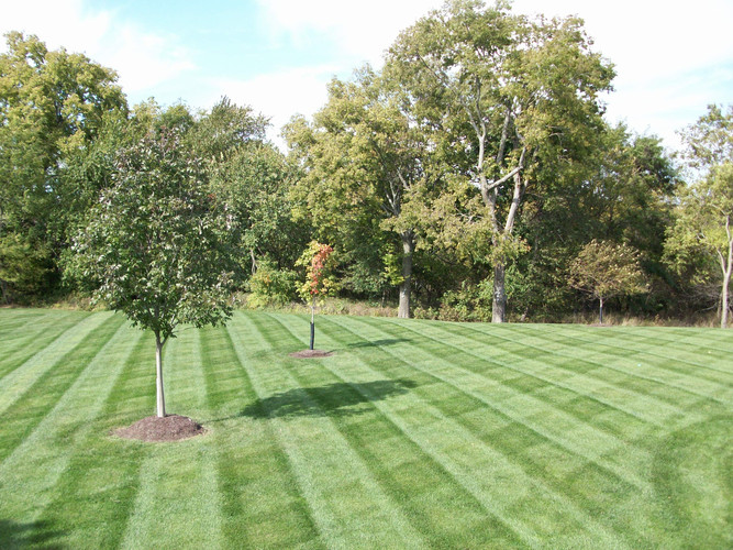 Mowing #1