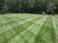 Mowing #3