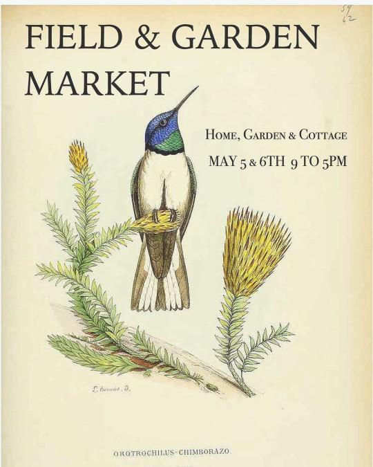Field and Garden Market