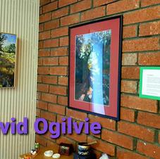 David Ogilvie 2020
