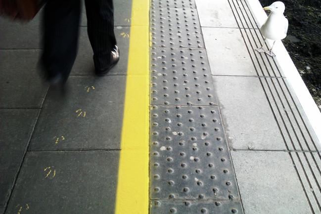 not-walking-the-line.jpg