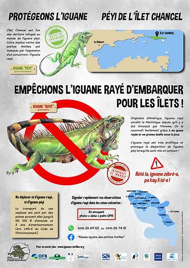 Panneau sensibilisation ne déplacez pas l'iguane rayé
