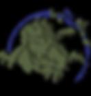 logo reseau iguanes des antilles.png