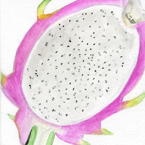 Dragonfruit Watercolor