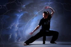 Kung fu TP-IRH-HAM-HC-13b.jpg