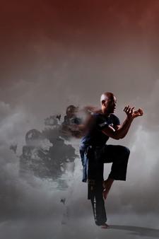 Kung fu TP-IRH-HAM-HC-19b copy.jpg