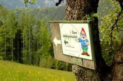 Auf zum Zwergerlwald...