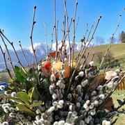 Palmbuschen - die immergrünen Osterboten!