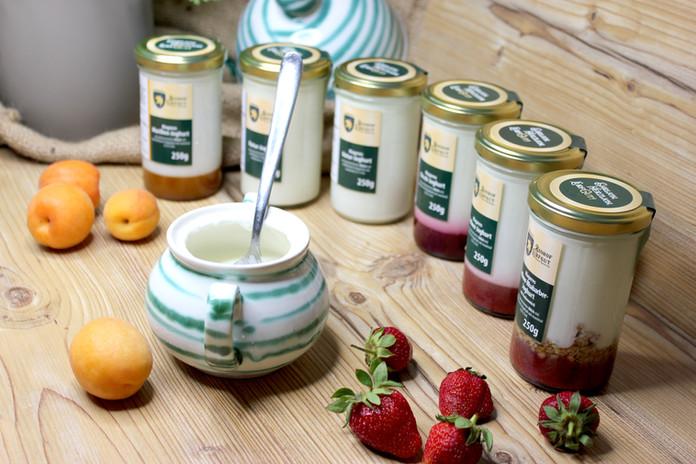 Joghurtpalette_1.JPG