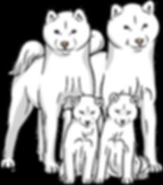 Akai Hana Kennel - hokkaydo family
