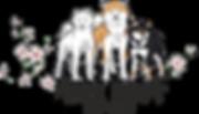 толмачева лого для передачи.png