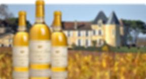 chateau yquem tasting wine tour
