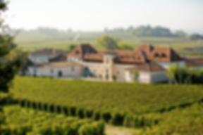 chateau angelus wine tour