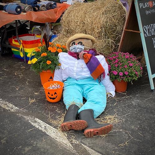 Scarecrow Kit