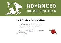 Illis Advanced Animal Training Certificate