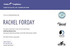 ACEing Reactivity certificate-RF.jpg