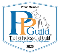 Pet Professionnal Guild Member Badge 2020