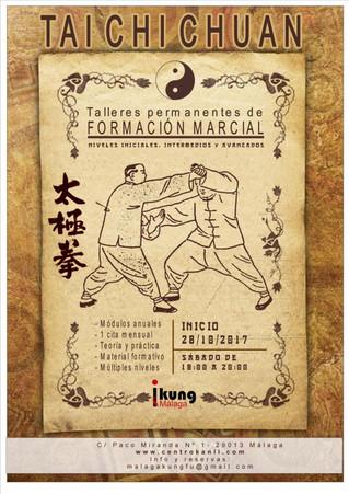 FORMACIÓN MARCIAL. TAIJIQUAN ESTUDIO DE APLICACIONES MARCIALES