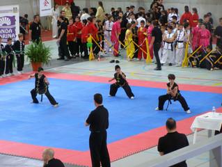 La importancia del trabajo sobre el equilibrio y la coordinación en la formación marcial infantil. 1