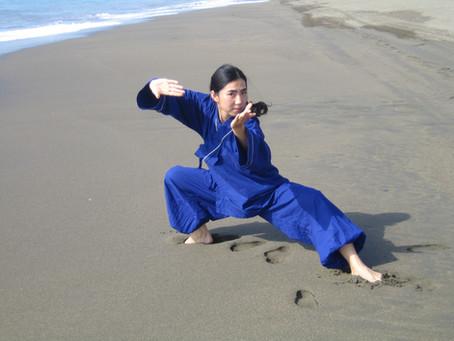 La maestra Wang Yang