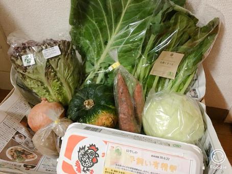 9月26日お届け野菜セットおすすめレシピ