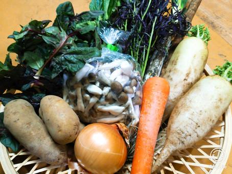 2月28日お届け野菜セットおすすめレシピ