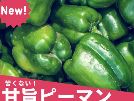 8月15日お届け野菜セットおすすめレシピ